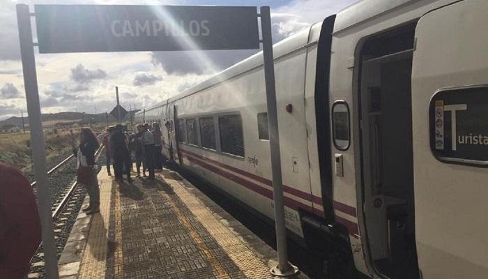 La Plataforma del Ferrocarril demanda celeridad en las obras de mejora y la sustitución de trenes