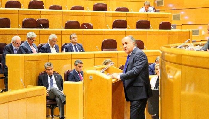 El senador y alcalde de Algeciras, José Ignacio Landaluce, en la tribuna del Senado