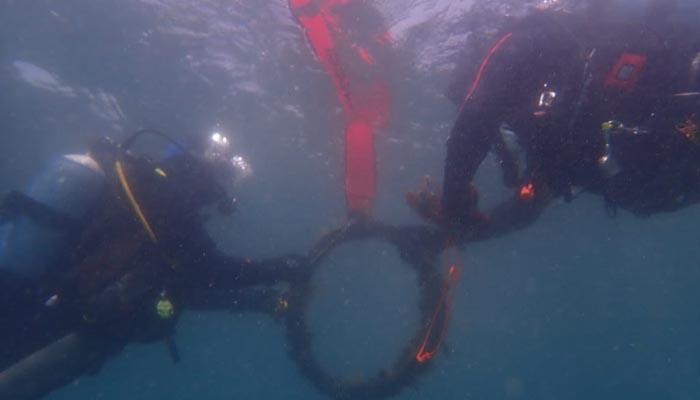 Limpieza submarina de plásticos. Foto: Verdemar