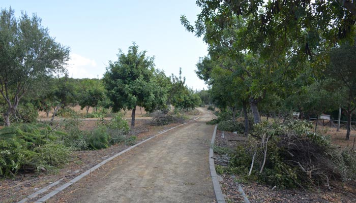 El parque de la Madrevieja, en San Roque