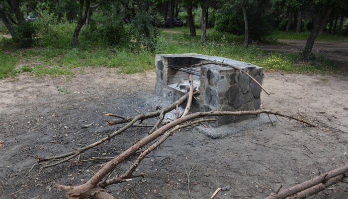 El Pinar del Rey ha sufrido vandalismo el primer fin de semana sin estado de alarma