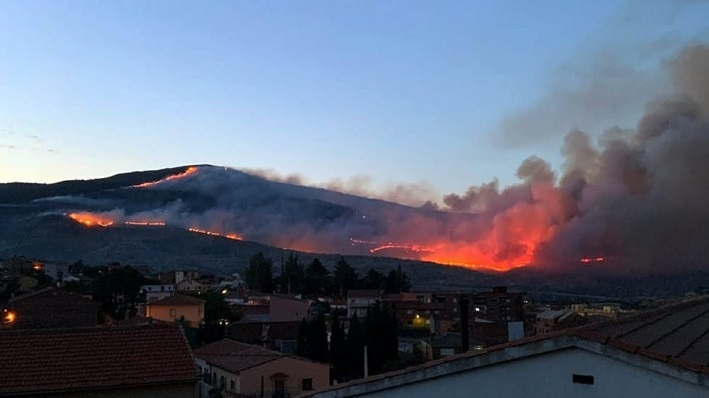 Una de las imágenes del fuego declarado en La Línea. Foto: sanroque.es