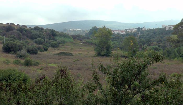 Lugar donde iría ubicado el nuevo recinto ferial de San Roque. Foto: Multimedia