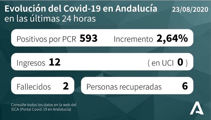 Los nuevos contagios en Andalucía llegan casi hasta los 600