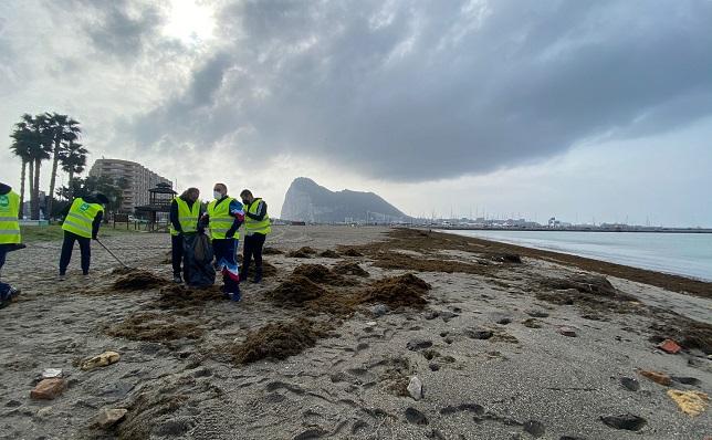 Operarios retirando algas de la playa de Poniente de La Línea. Foto: Sergio Rodríguez