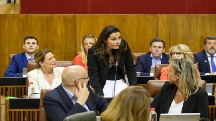 La parlamentaria de Ciudadanos, Ángel Rodríguez, en la cámara autonómica