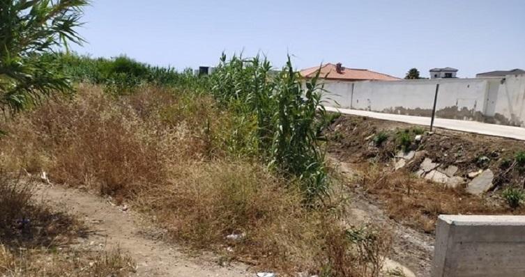Arroyo Cañada Honda de La Línea