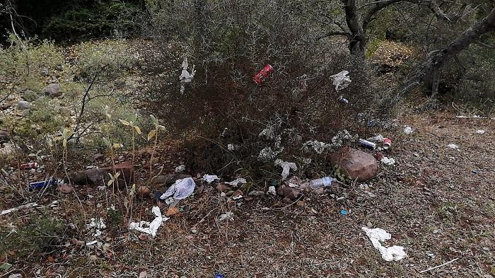 Verdemar denuncia la suciedad en las cercanías del río de la Miel