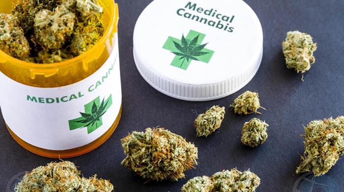 Tarro con Cannabis medicinal. Foto NG