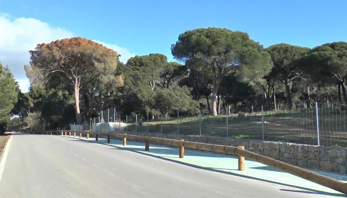 La carretera del Pinar del Rey, en San Roque