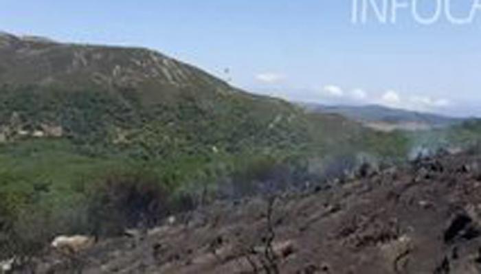 Zona afectada en el incendio de Tarifa