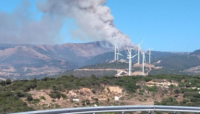 Estabilizado un incendio en el paraje Tajo de las Escobas en Tarifa