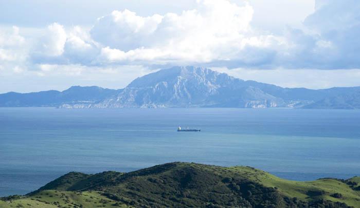 El Estrecho de Gibraltar, ruta migratoria de aves