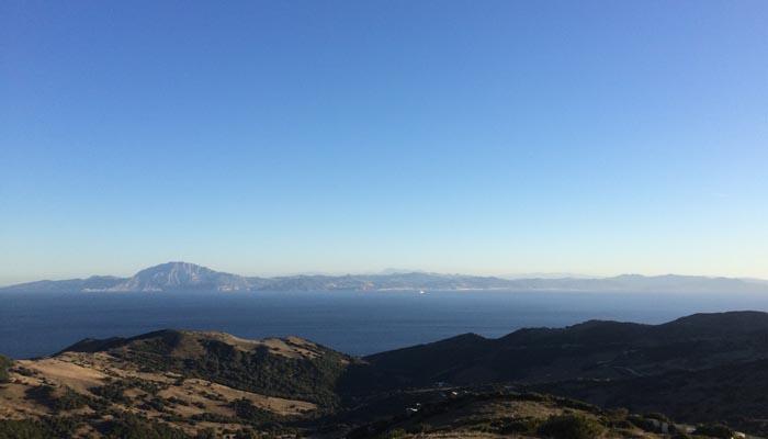 El Estrecho de Gibraltar es zona de paso de cetáceos