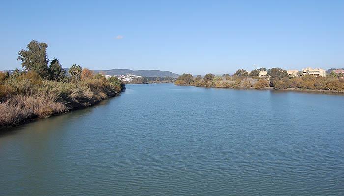 Estuario del río Guadiaro