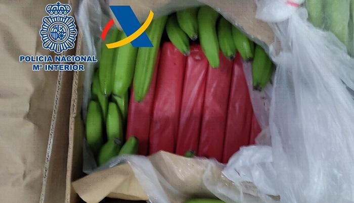 Intervenidos en Algeciras 1.152 kilos de cocaína ocultos entre plátanos