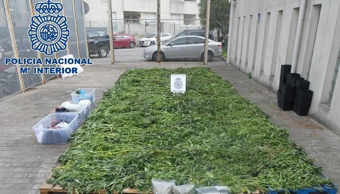 Dos detenidos en Algeciras por supuesto blanqueo derivado del tráfico de drogas