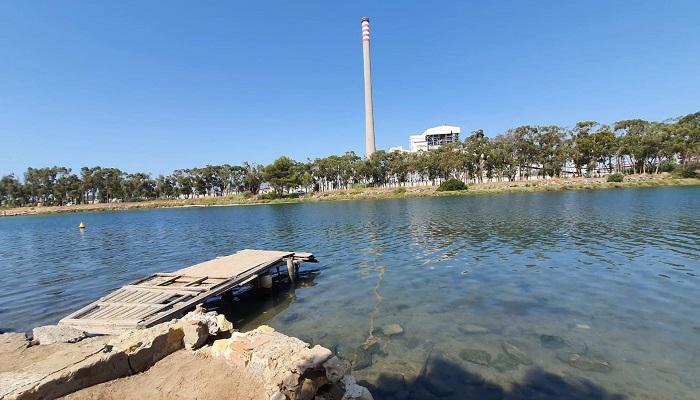 Verdemar pide recuperar las marismas de los ríos Palmones y Guadarranque