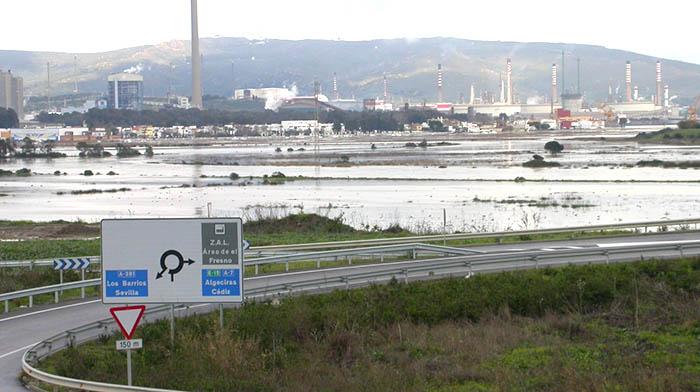 Humedales de la Bahía de Algeciras. Foto Verdemar