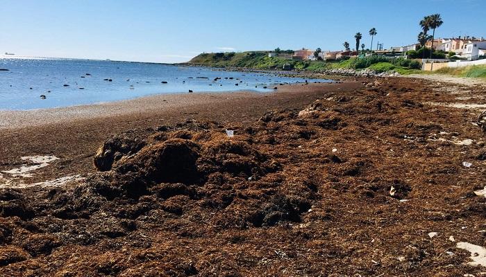 Agaden lamenta el 'olvido' del Ayuntamiento con El Chinarral en Algeciras