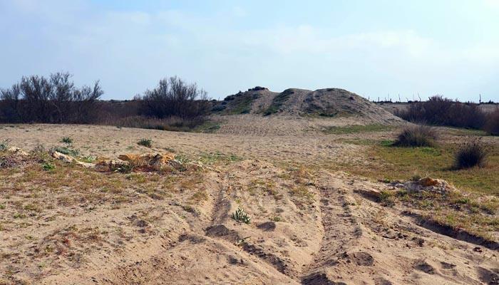 Imagen del lugar al que se refieren los ecologistas. Foto: Verdemar
