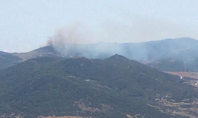 El incendio originado hoy en el término municipal de Tarifa