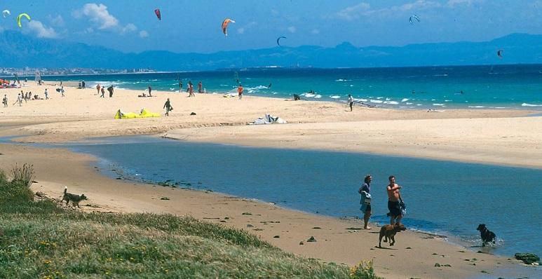 Imagen de una playa de Tarifa durante el pasado mes de enero