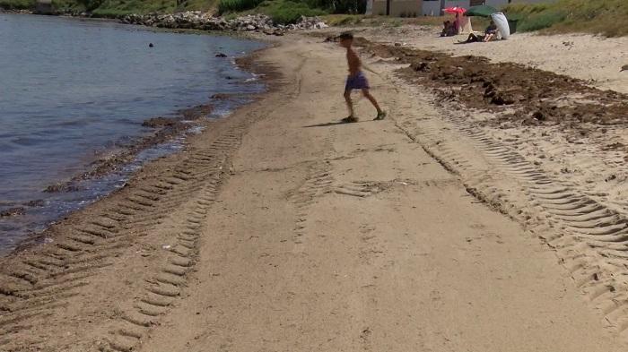 Landaluce solicita una reunión con los municipios afectados por el alga invasora