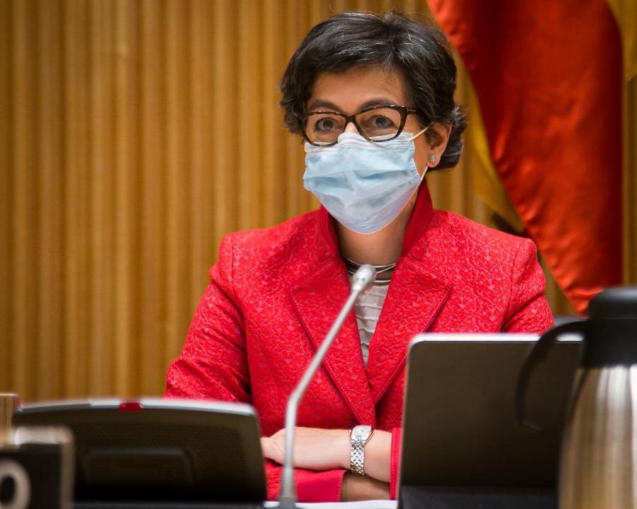 La ministra en su intervención ante la Comisión Mixta. Foto CD
