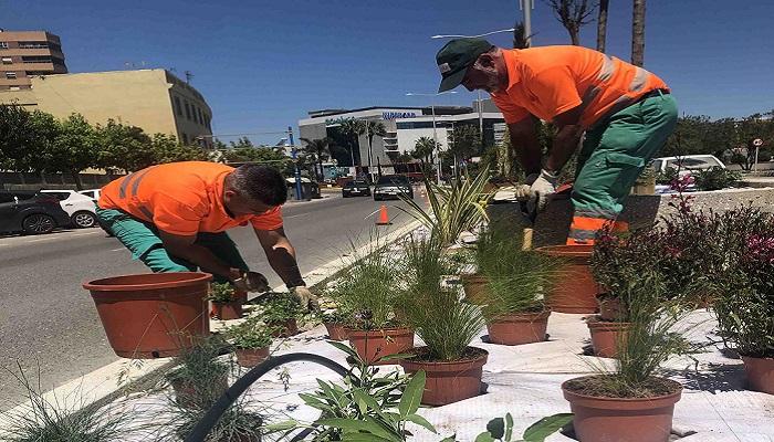 Los operarios, colocando las plantas en la avenida Virgen del Carmen