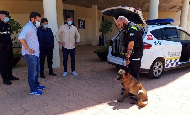 El perro policía, esta mañana en el Ayuntamiento de La Línea