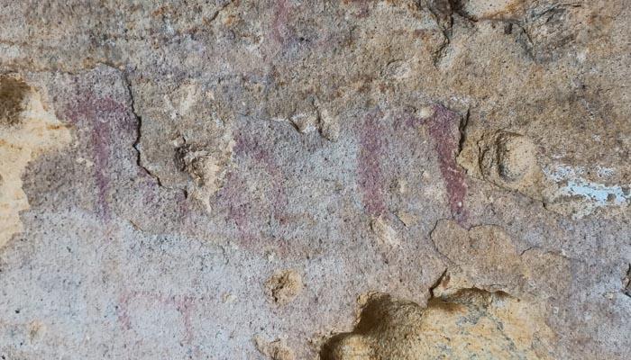Pinturas rupestres en el término municipal de San Roque. Foto: Verdemar
