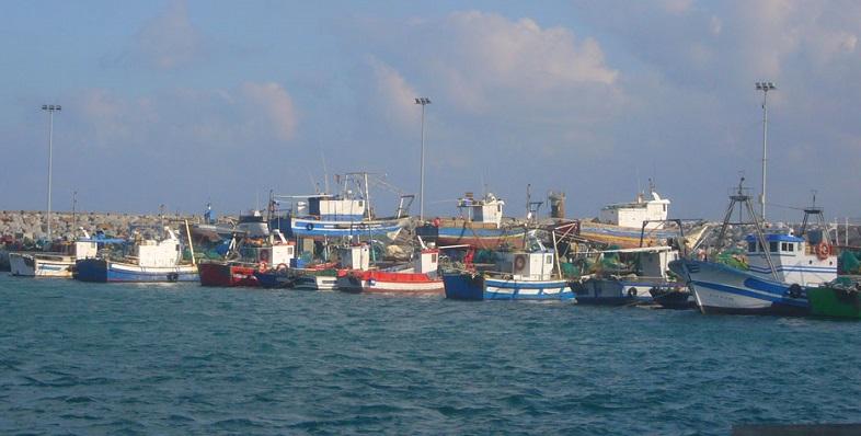 Una foto reciente de varios pesqueros en el Puerto de 'La Atunara'