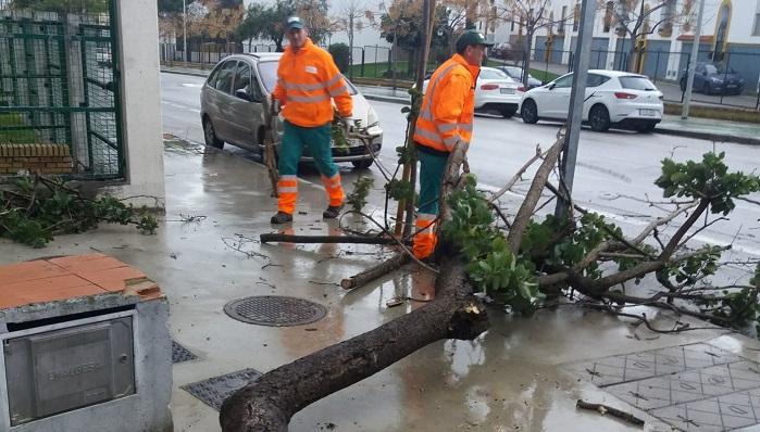 Algeciras no registra incidencias graves a pesar del fuerte temporal de viento