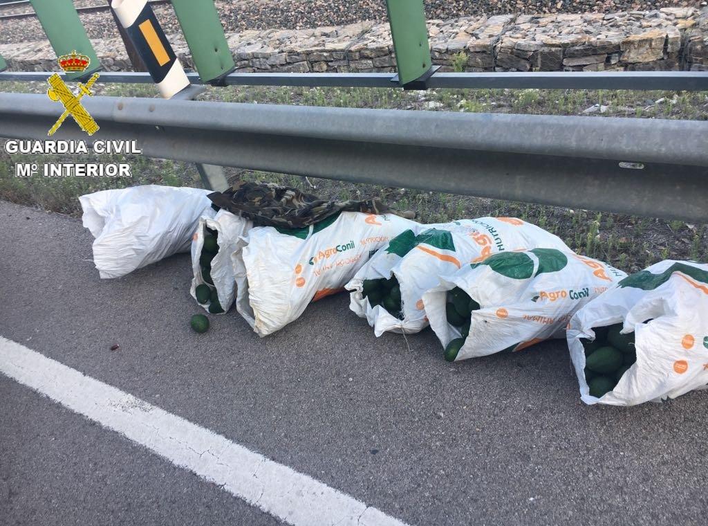 Sacos cargados con los aguacates robados