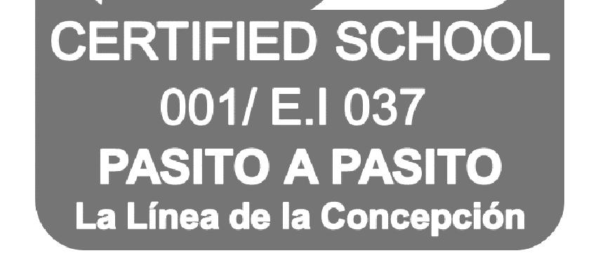 El certificado de seguridad para la Guardería 'Pasito a Pasito'. Foto: NG