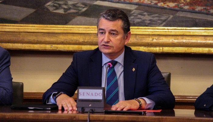 El presidente del PP en Cádiz y senador, Antonio Sanz