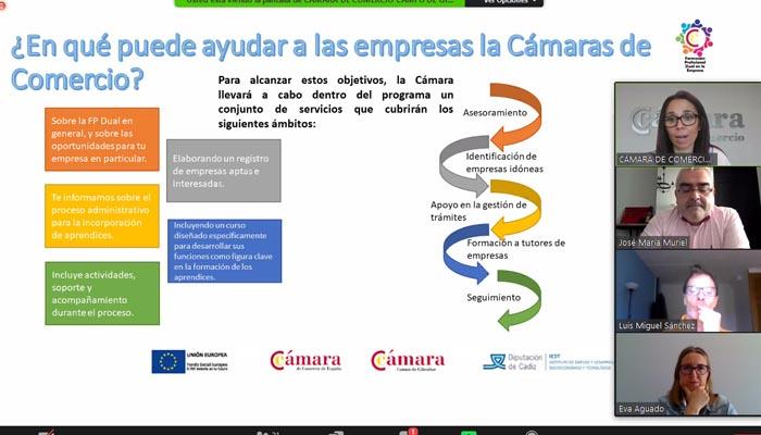 Imagen de la sesión digital organizada por la Cámara de Comercio.