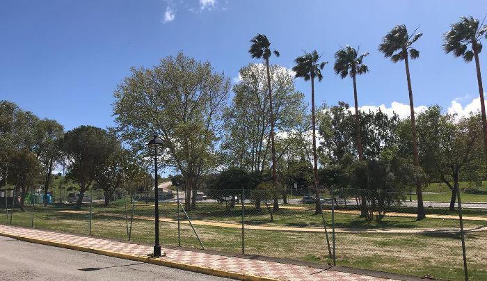 Verdemar ha denunciado un supuesto arboricidio en Los Barrios