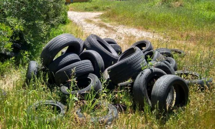 Neumáticos apilados cerca del arroyo de la Madre Vieja