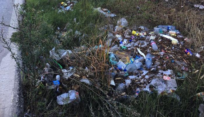 Cuneta repleta de basuras en una carretera del término municipal de Los Barrios