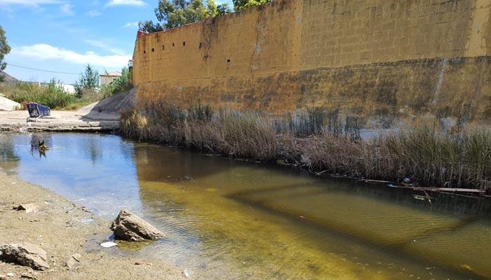 Aspecto parcial del arroyo Cachón