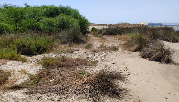 Las dunas de Guadarranque, en San Roque, con las marcas de vehículos