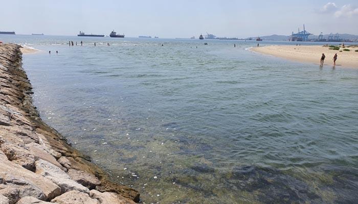 La desembocadura del río Palmones