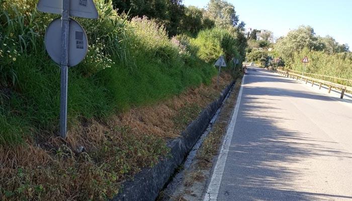 Cuneta de la carretera del Pinar del Rey, en San Roque