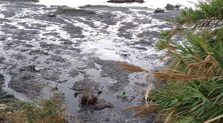 Imagen de la playa difundida por Verdemar