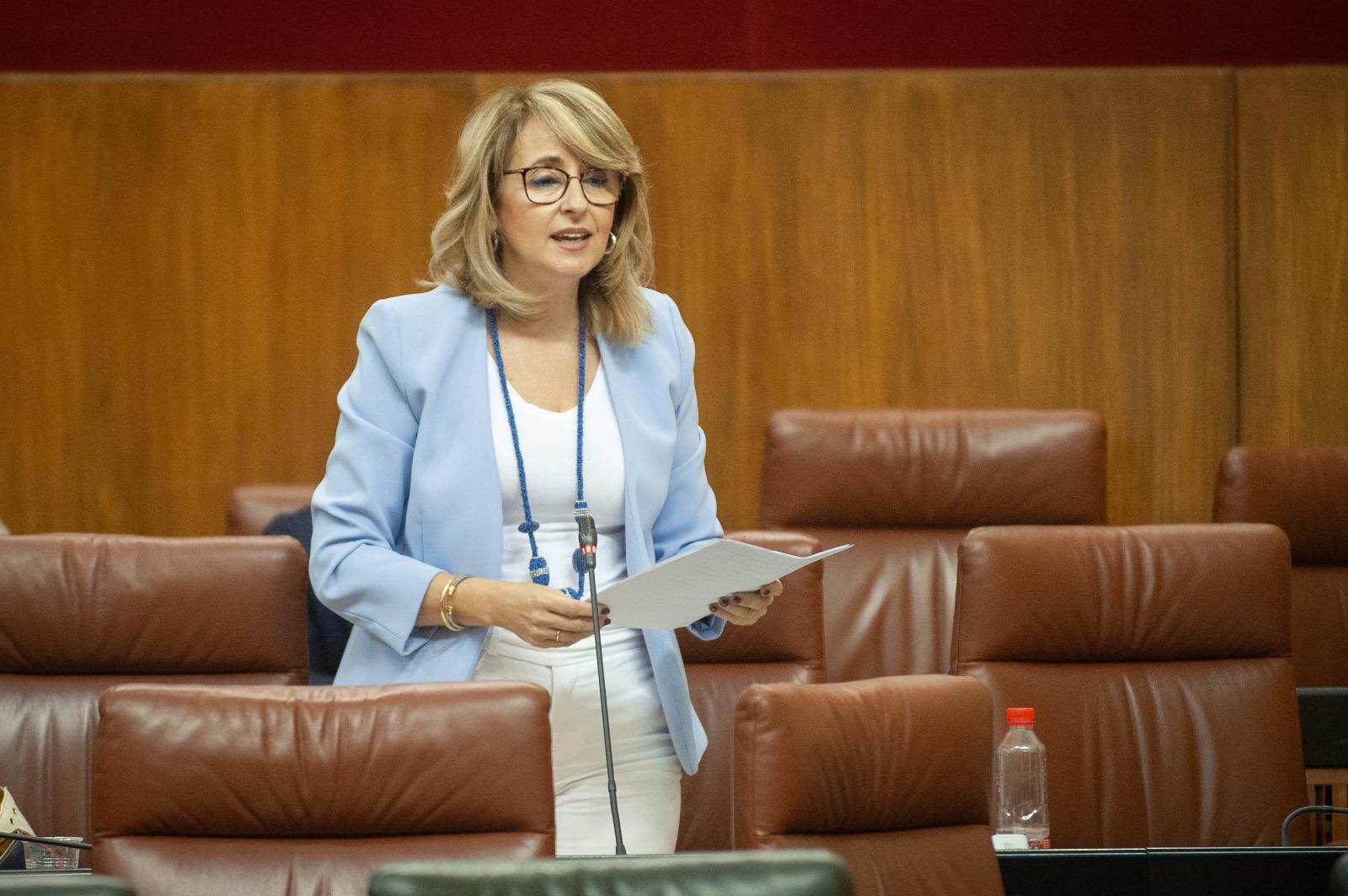 Pilar Pintor en el Parlamento andaluz. Foto NG