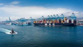 Las exportaciones andaluzas despuntan en los tráficos del Puerto