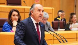 Landaluce lamenta que 'el PSOE no sea capaz de ver la mejora de Algeciras'