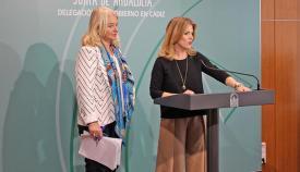 La delegada del Gobierno en Cádiz, Ana Mestre, hoy en rueda de prensa